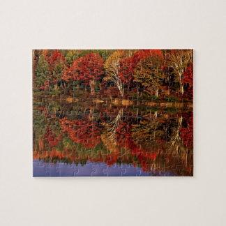 United States, Michigan, Upper Peninsula. Fall Puzzles