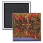 United States, Michigan, Upper Peninsula. Fall Square Magnet