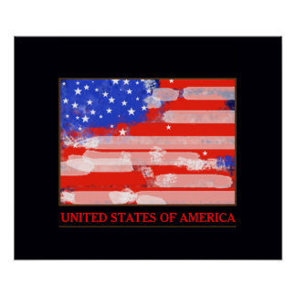 United States of America flag decor Poster