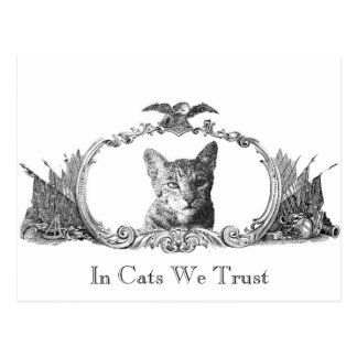United States of Cats Postcard