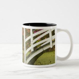 United States; South Carolina; Charleston; 2 Two-Tone Coffee Mug