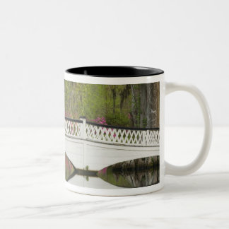 United States; South Carolina; Charleston; 3 Two-Tone Coffee Mug