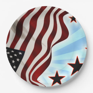 United States stars Paper Plate