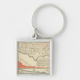 United States Thematic maps Key Ring