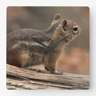 United States, Utah, Bryce Canyon National Park 1 Clock