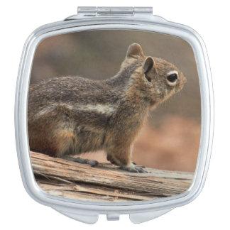 United States, Utah, Bryce Canyon National Park 1 Travel Mirror
