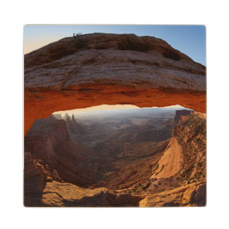 United States, Utah, Canyonlands National Park 2 Wood Coaster