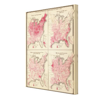 United States vitality maps Canvas Print