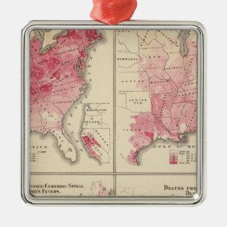United States vitality maps Ornament