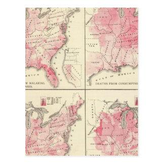 United States vitality maps Postcard