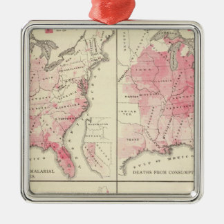 United States vitality maps Silver-Colored Square Decoration