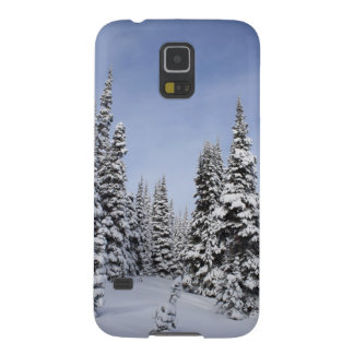 United States, Washington, snow covered trees Galaxy S5 Cover