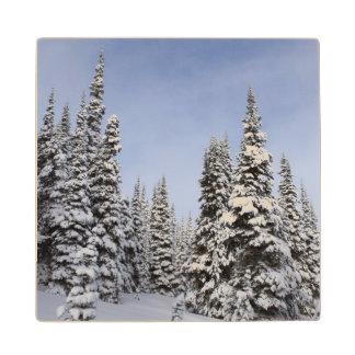 United States, Washington, snow covered trees Wood Coaster