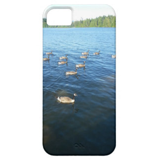 Unity among Believers iPhone 5 Cases