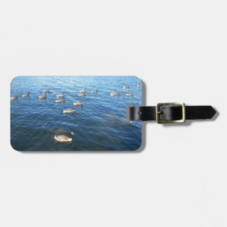 Unity among Believers Luggage Tag