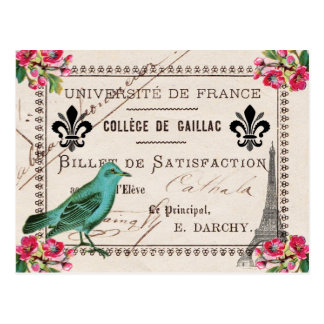 University of France Vintage French Postcard
