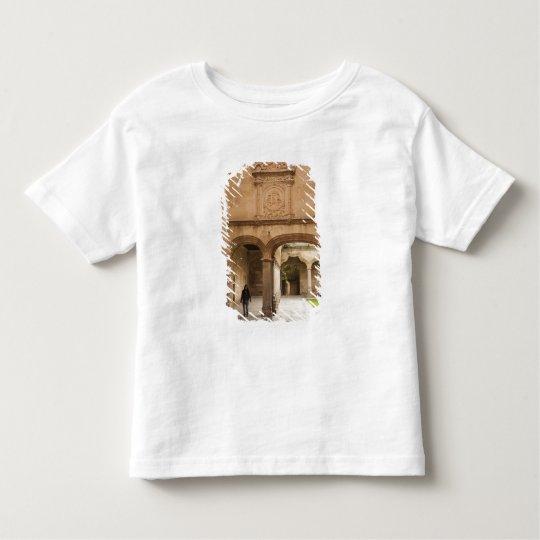 University of Salamanca Toddler T-Shirt