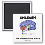 Unleash The Neuroscientist Within (Brain Anatomy)