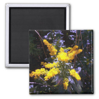 Unmellow Yellow Square Magnet