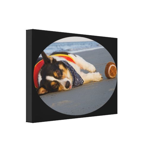 Unnecessary Roughness Stretched Canvas Prints
