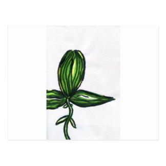 Uno Tri Plant Postcard