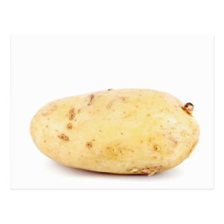 Unpeeled Yellow Potato Postcard