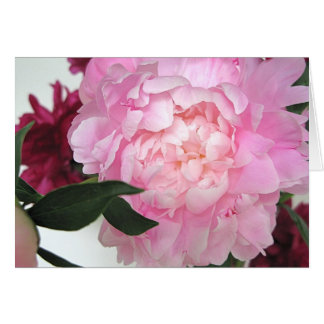 Untitled Peony Greeting Card