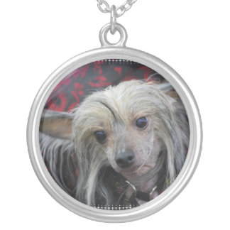 Unusual Chinese Crested Necklace