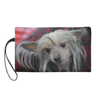 Unusual Chinese Crested Wristlet Clutch
