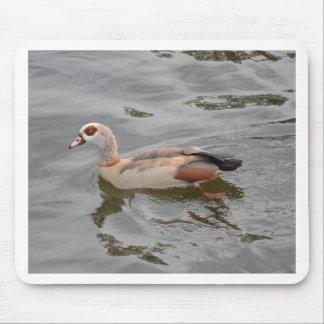 Unusual Duck Mousepads