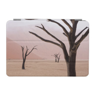 Unusual rainy weather conditions in early morning iPad mini cover