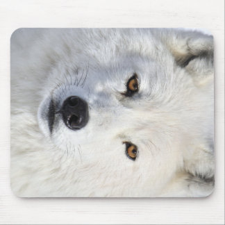 up close and personal.jpg mouse pad