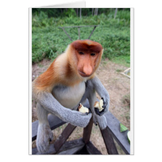 Up close and personal with male Proboscis monkey Card