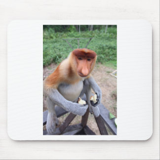 Up close and personal with male Proboscis monkey Mouse Pad