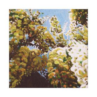 Up into wisteria 2011 canvas print