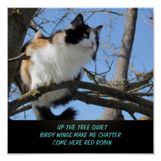Up the Tree Quiet Cat Meme Haiku Poster