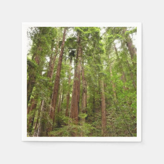 Up to Redwoods at Muir Woods National Monument Disposable Serviette