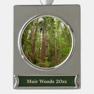 Up to Redwoods at Muir Woods National Monument Silver Plated Banner Ornament