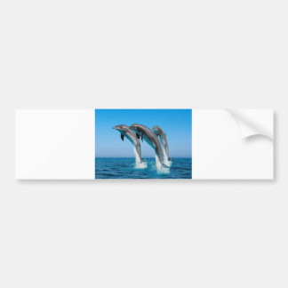 Up Up Up Dolphins Bumper Sticker