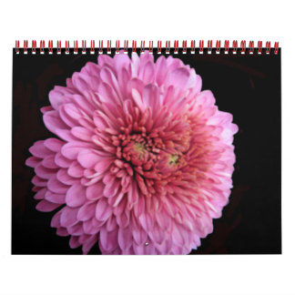Updated Floral Calendar