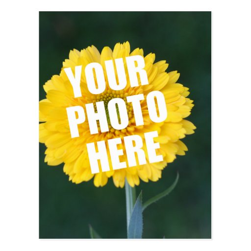 UPLOAD YOUR OWN PHOTO & Create The Perfect Gift Postcards
