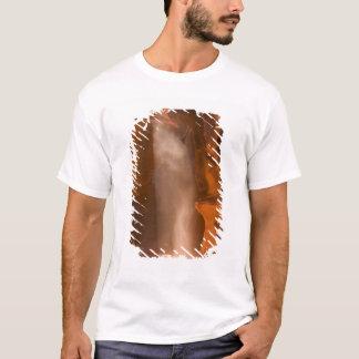 Upper Antelope Canyon, Page, Arizona 2 T-Shirt