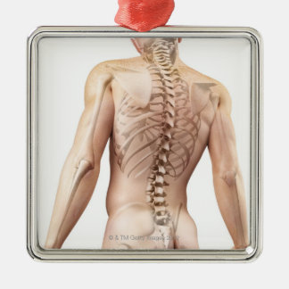 Upper Body Bones 2 Christmas Ornament