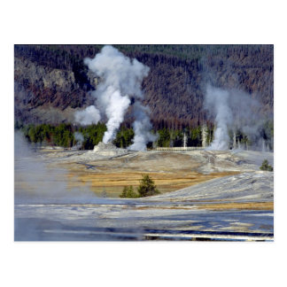 Upper Geyser Basin, Yellowstone National Park, U.S Postcard