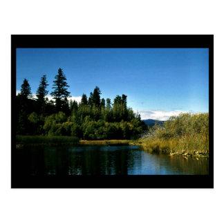 Upper Klamath National Wildlife Refuge Postcard