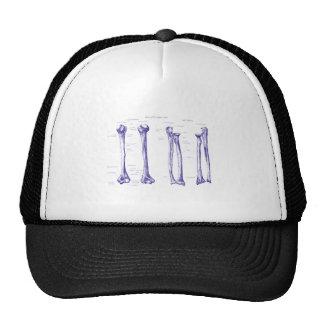 Upper Limb Blue Cap