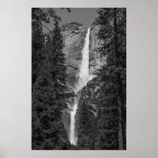 Upper  Lower Yosemite Falls Ansel Adams like bw Poster
