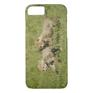 Upper Mara, Masai Mara Game Reserve, iPhone 8/7 Case