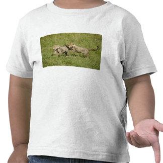 Upper Mara, Masai Mara Game Reserve, T-shirts