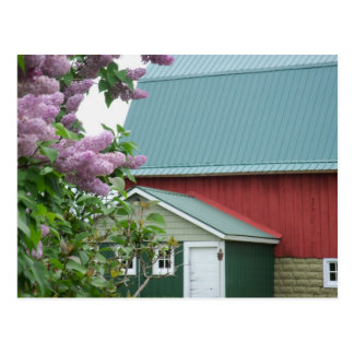 Upper Peninsula Michigan Red Barn Lilac Postcard
